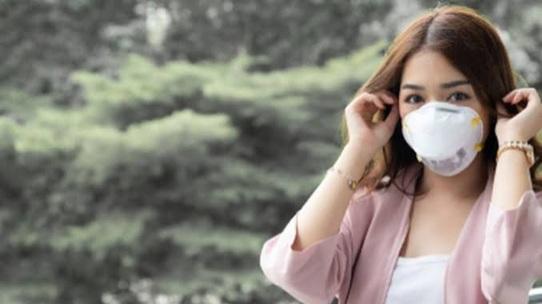 DKI Jakarta Banding Terhadap Kemenangan Warga Terkait Polusi Udara
