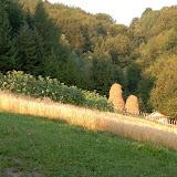 Piwniczna 2007 - Mistyczna wieczerza - DSCN3967.JPG