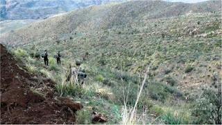 Terrorisme : L'armée algérienne continue son « grand ménage »