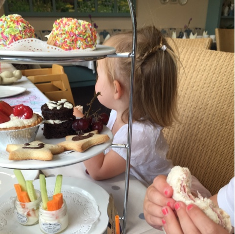 Childrens afternoon tea at Dobbies