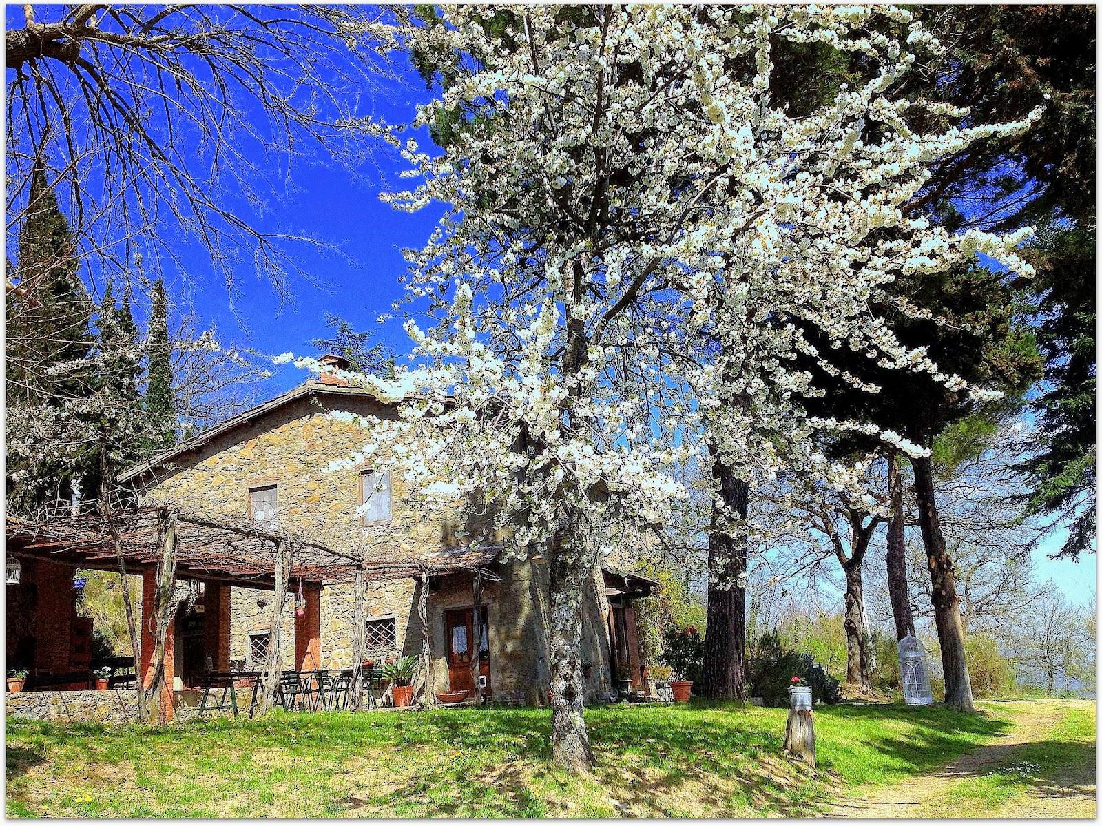 Casale Montena_Greve in Chianti_1