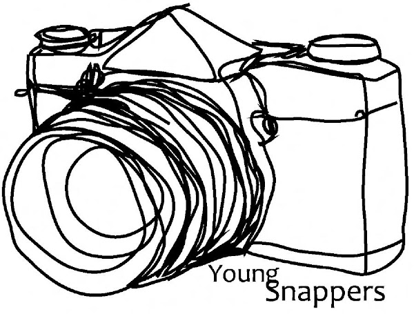 young snappers logo