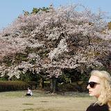 2014 Japan - Dag 11 - jordi-DSC_1014.JPG