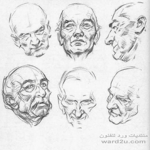 رسم البورترية اسكتشات  ودراسة بالقلم الرصاص