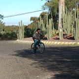 mexico city - 85.jpg