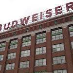 Katie_Aliferis-Photo_for_consideration___Looming_Budweiser.jpg