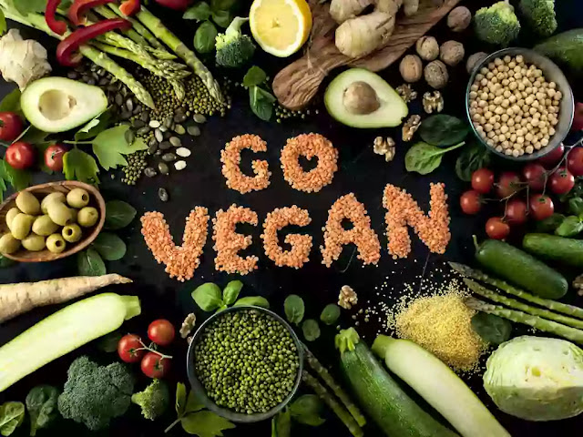 5 Ethical REASONS You Should GO VEGAN