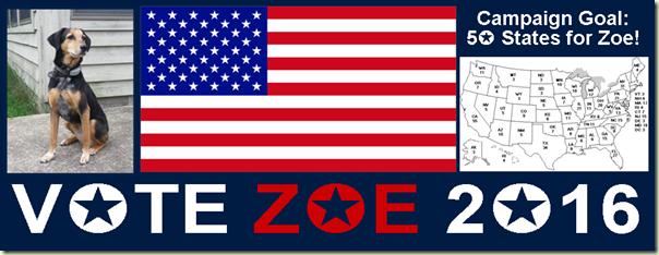 ZoeCoverPhoto