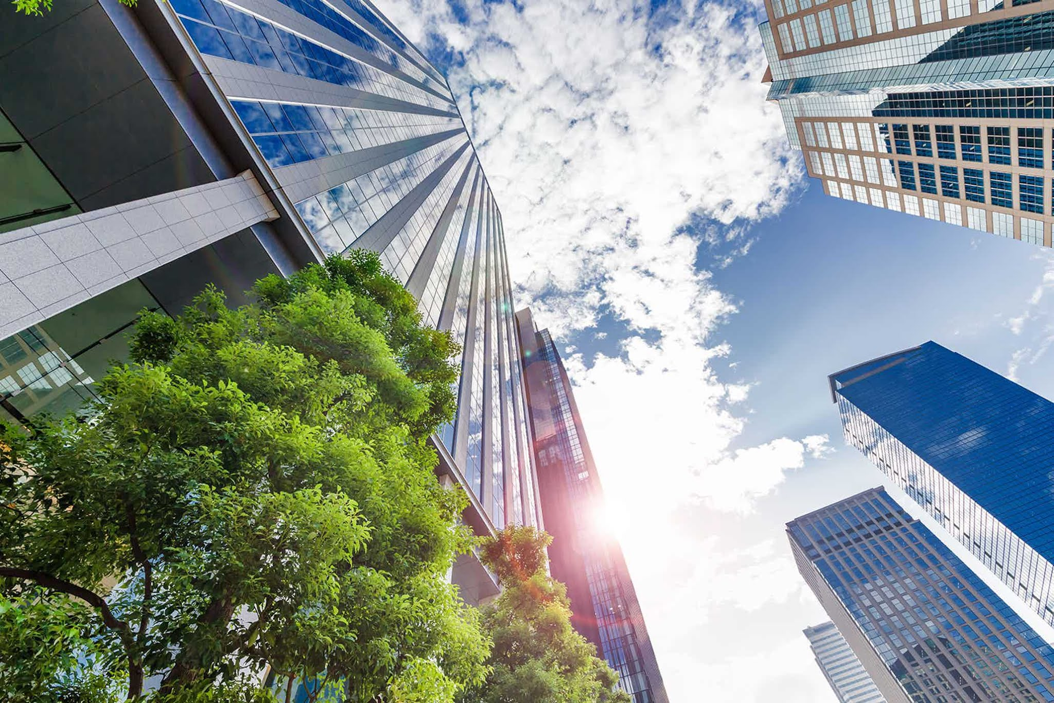 companies investing in csr policy