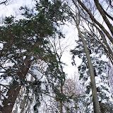 Winter Lubnik - Vika-0673.jpg