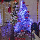 Exposició de Complements de Floristeria i Jardineria de Nadal 2014 - DSC_0064.JPG