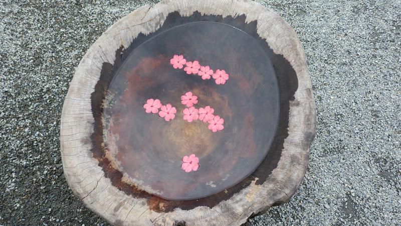 TAIWAN A cote de Luoding, Yilan county - P1130518.JPG