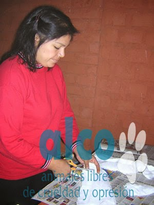 campaña esterilizacion VES 2008 (11)