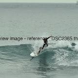 _DSC2365.thumb.jpg
