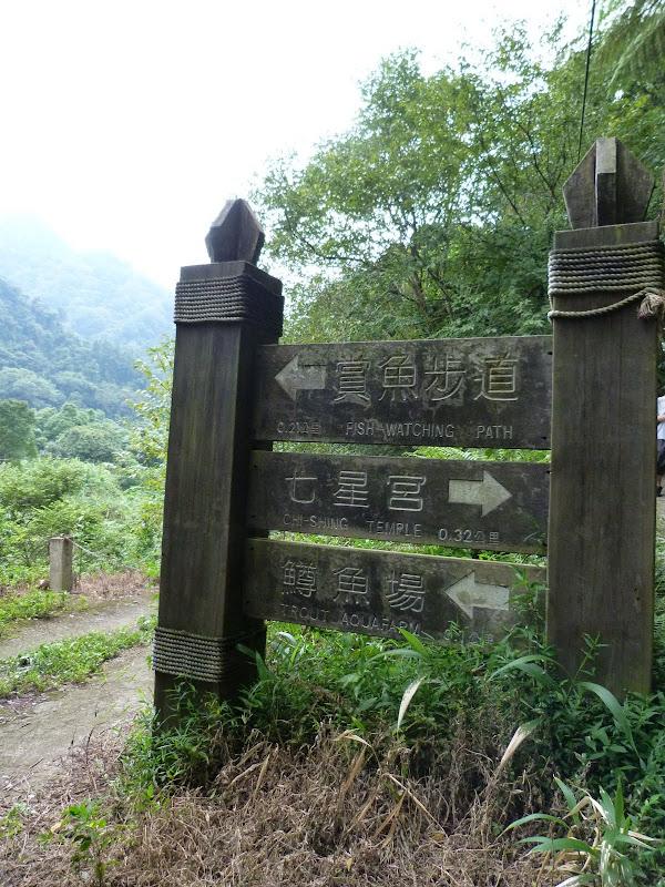 TAIWAN.Dans la région de Miaoli - P1080384.JPG