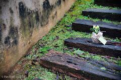 Foto 0008. Marcadores: 13/06/2009, Casamento Flavia e Daniel, Lembrancinha, Teresopolis, Vasinho