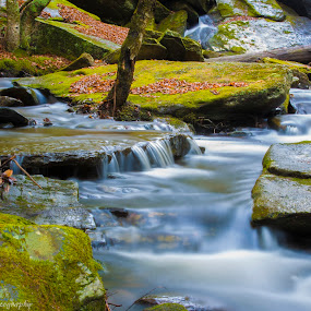 by Steve S - Landscapes Waterscapes