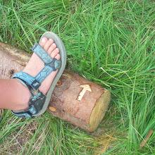 Pow-wow, Ilirska Bistrica 2004 - P1008183.jpg