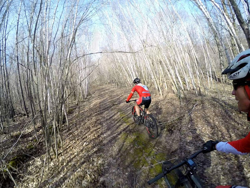 Forest trail riding north of the Maplelag trails