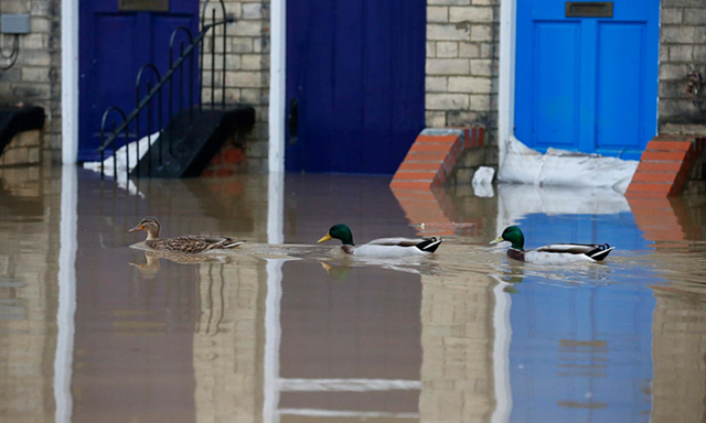 Ducks swim past flooded houses in York last month. Latest Met Office figures show December has broken records for rainfall and temperature. Photo: Lindsey Parnaby/EPA