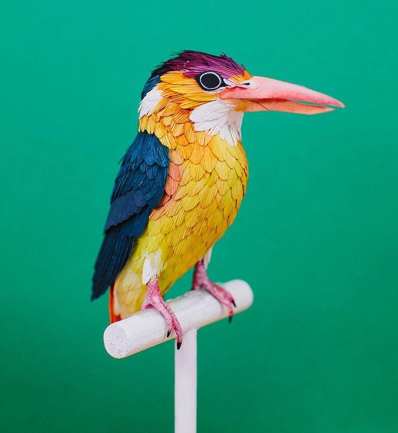diana-beltran-herrera-birds-20