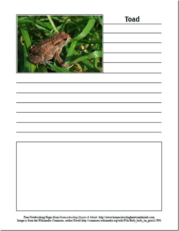 Free Wind in the Willows Notebooking Pages at Homeschooling Hearts & Minds