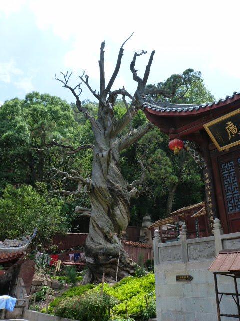 CHINE SICHUAN.XI CHANG ET MINORITE YI, à 1 heure de route de la ville - 1sichuan%2B780.JPG