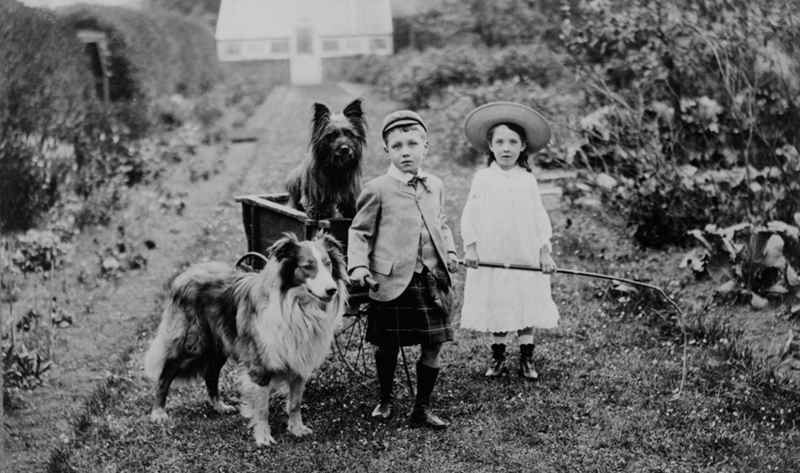 Boy (wearing kilt) and girl with two dogs and a handcart wagon