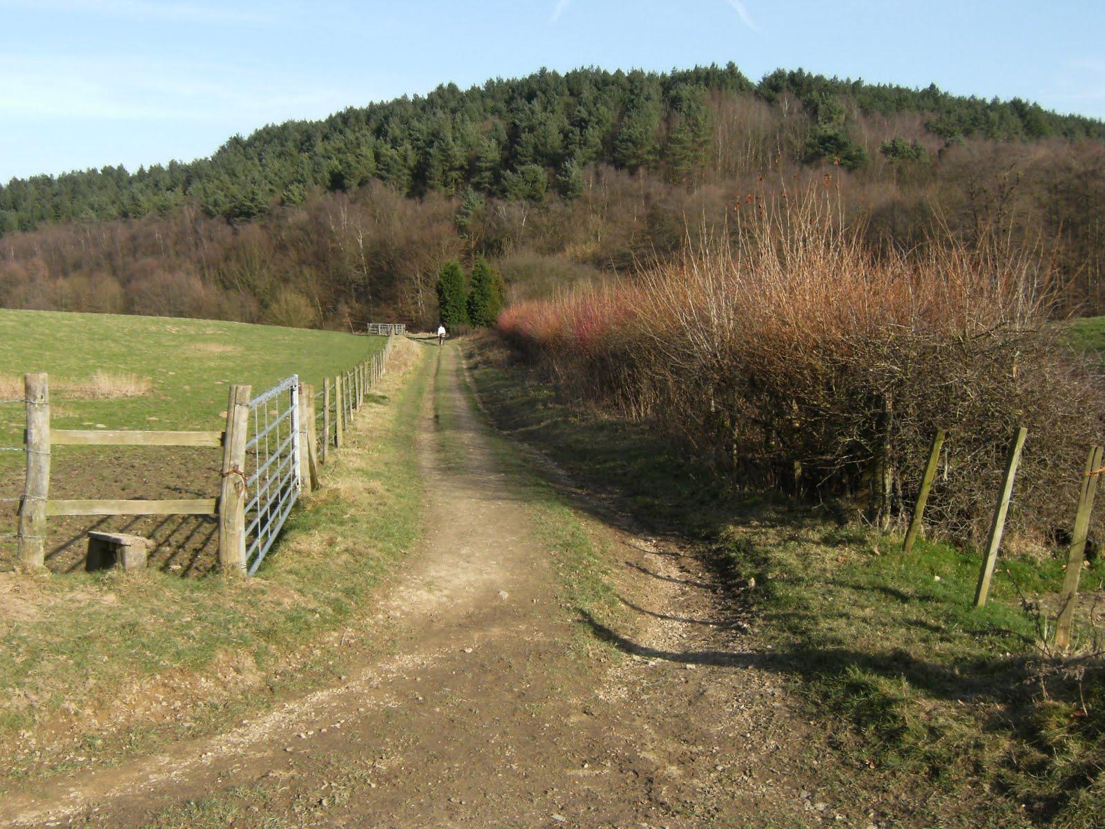 DSCF0452 Squerryes Park