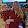 Robin Froysland's profile photo