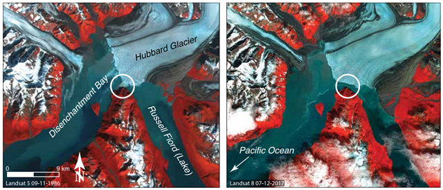 Landsat satellite images of Hubbard Glacier closing off Russell Fiord in 1986 (left) and in a more retracted position in 2017 (right). The point where in 1986 Hubbard Glacier advanced sufficiently to turn Russell Fiord into a lake is circled. Photo: TheAlpineClubofCanada / State of the Mountains