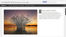 Le bouton J'aime de Facebook, dans l'entête d'un modèle dynamique.