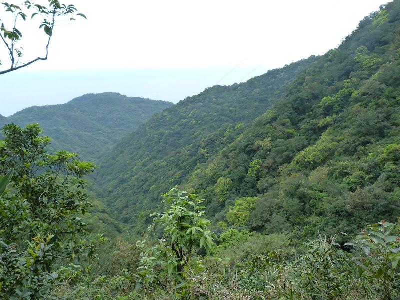 TAIWAN Daxi . Randonnée Taoyan valley - P1260074.JPG