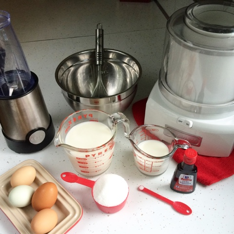 ingredients and equipment for Sadie's Homemade Ice Cream
