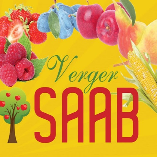 Image result for VergerSaab