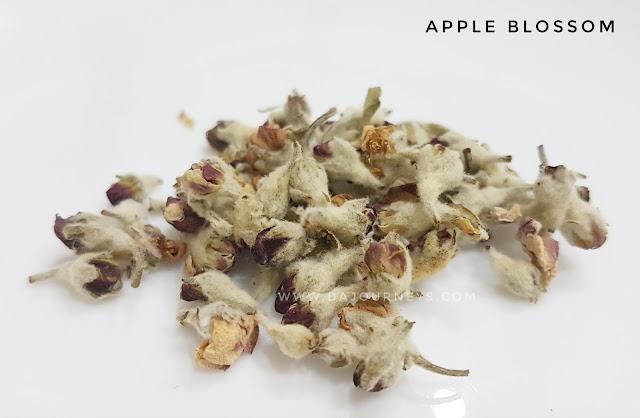 Manfaat dan Khasiat bunga apple blossom