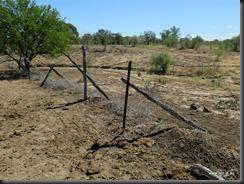 180508 082 Dingo Fence Near Hughenden
