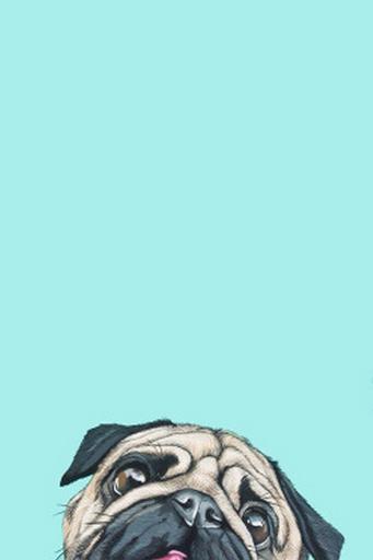 Cute Cartoon Bunny Wallpapers Blog Enquanto Isso 24 Wallpapers Que Ir 227 O Arrasar No