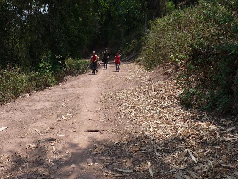 Chine: randonnée xishangbanna, région de Bada - Picture1%2B1003.jpg