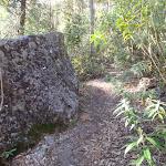 A boulder beside the track (164419)