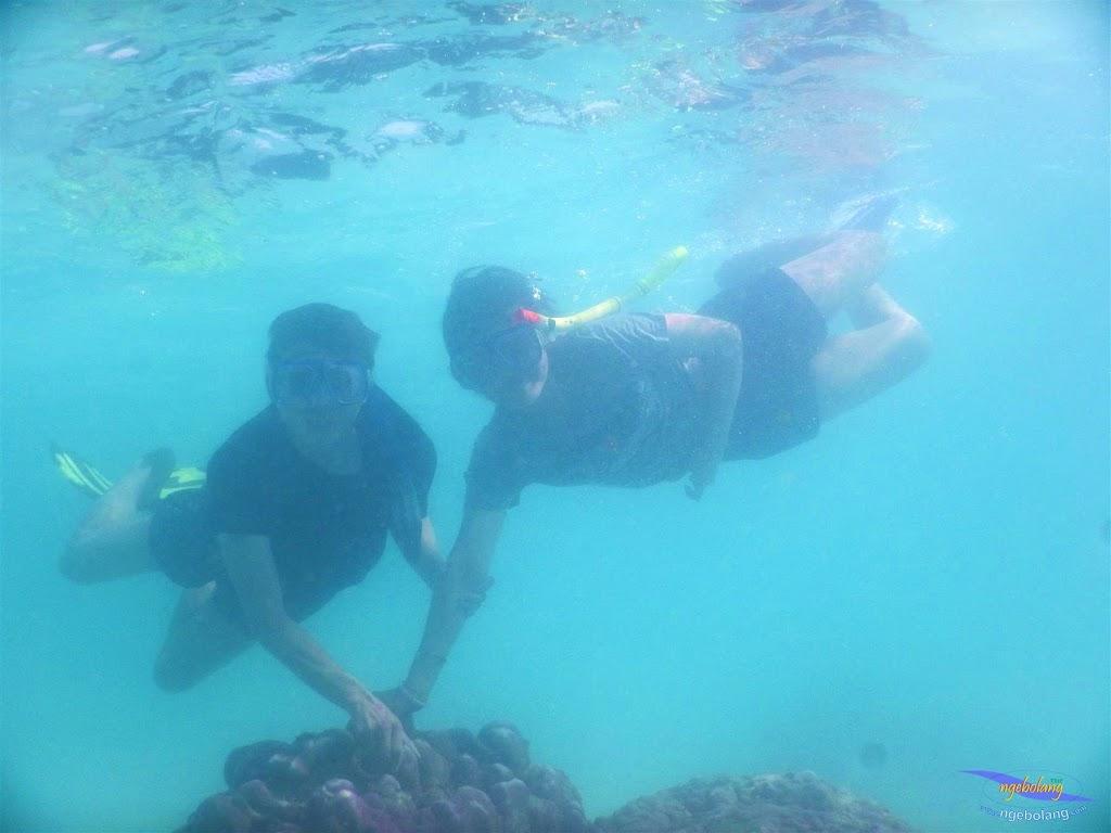 pulau pari, 23-24 mei 2015 35