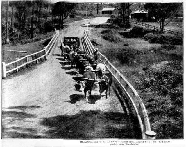 team-1935