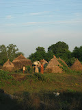 Stores of dried dung cakes