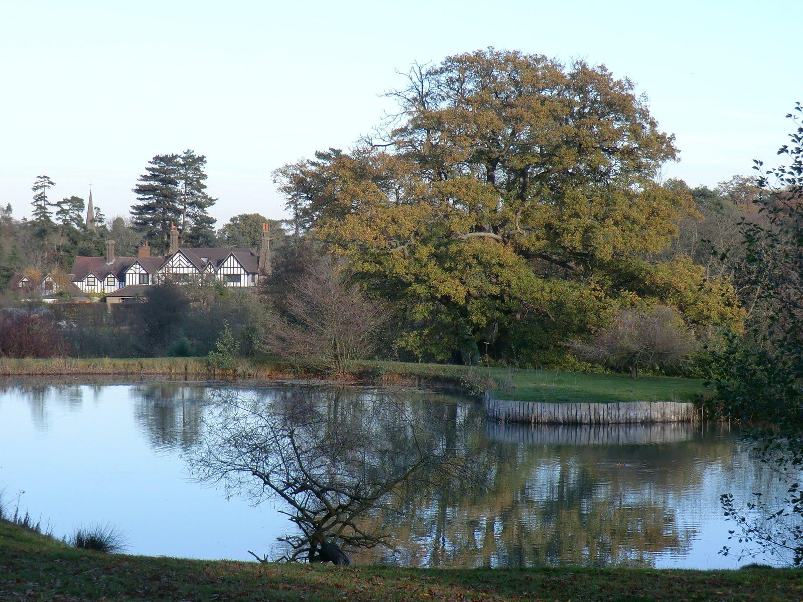 CIMG0301 Large garden pond, Hever