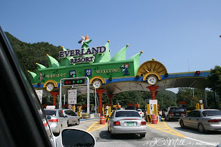 EverLand Seoul /Photography by Icemilk/