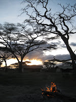 Mobile Tented Camp - Northern Circuit Safari - Serengeti