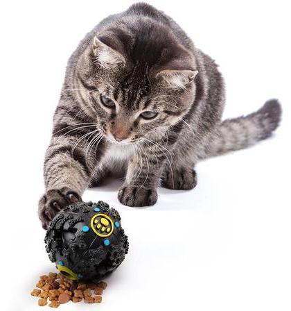 Lợi ích từ việc mua đồ chơi cho chó mèo cưng