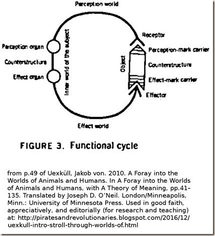 Uexkull. Stroll. subject object perception effection Circuit.fig 3.2010edn.600p