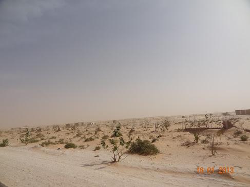 marrocos - Marrocos e Mauritãnia a Queimar Pneu e Gasolina - Página 8 DSC06194