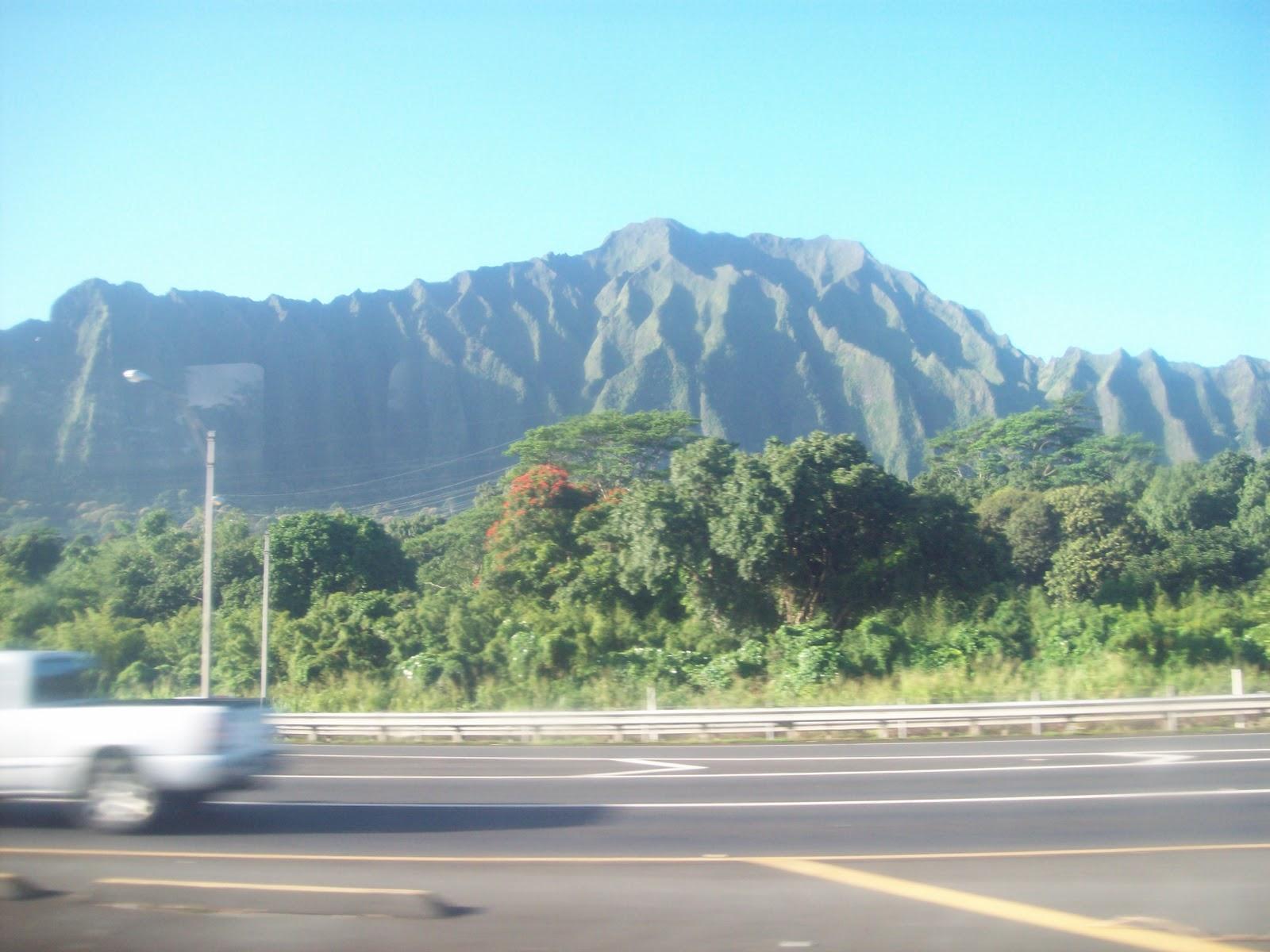 Hawaii Day 3 - 114_1019.JPG